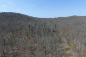 East Tennessee Wooded Hunting & Recreation Property