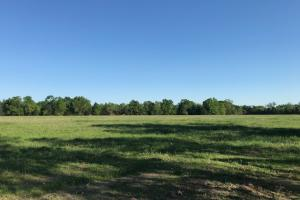 28 acres near Purtis Creek State Park - Van Zandt County TX