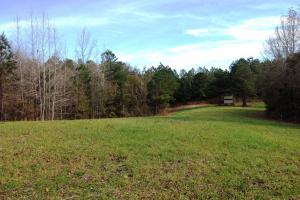 The Red Hill Creek & Camp Hwy 225 Tract in Baldwin, AL (42 of 49)