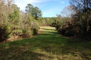 The Red Hill Creek & Camp Hwy 225 Tract in Baldwin, AL (48 of 49)