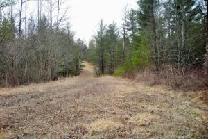 Georgia Mountains Recreational Homesite in Gilmer, GA (15 of 19)