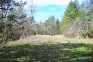 Georgia Mountains Recreational Homesite