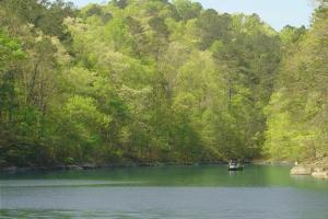 Smith Lake Lot 3 at Lakewoods on Rock Creek - Winston County AL
