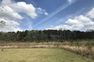 Summerville Residential Tract  - Berkeley County SC