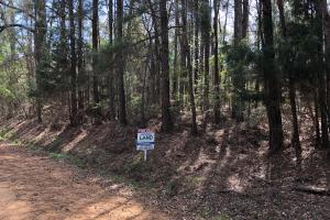 Georgiana Homesite/Timber Investment - Butler County AL