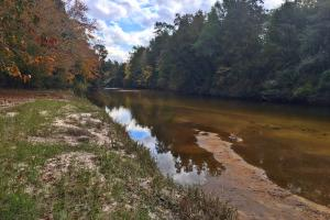 Styx River Hunting Camp and Recreational Tract - Baldwin County AL