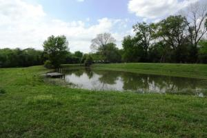 Madisonville Large Trees, Pasture, Creek and Pond - Madison County TX