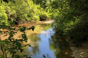 Biloxi River Recreational Tract - Harrison County MS