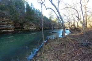 200 Acres Adjoining Cherokee WMA and the West Fork of Point Remove Creek - Conway County AR