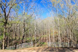The Atchison Trace Road Columbiana Mini-Farm - Shelby County AL