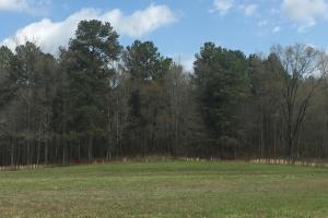 Excellent Development Opportunity in Rapidly Growing Area  - Lafayette County MS