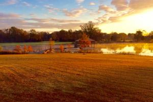 Safford Trophy Whitetail Lake and Lodge Tract - Dallas County AL