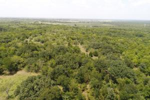 10 ac near Scurry, Timber, Rolling Terrain, Wildlife - Kaufman County TX