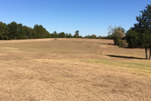Ranch or Rural Homesite - Sumter County AL