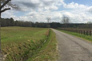 Potential Commercial Tract with Road Frontage - Lafayette County MS