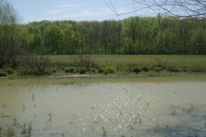 Bigelow Residential, Cropland, Deer and Duck Hunting  - Perry County AR