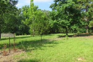 Hinds Co Mini Farm - Hinds County MS