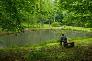 <p>Small pond stocked with rainbow trout</p>
