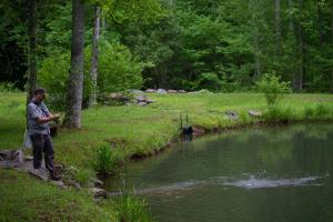 Black Mountain 337 +/- Acre Wilderness Retreat - Buncombe County NC