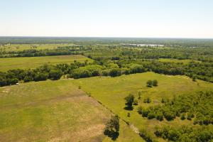 88 acre Ranch/Recreational/Hunting Tract in San Jacinto, TX (8 of 45)