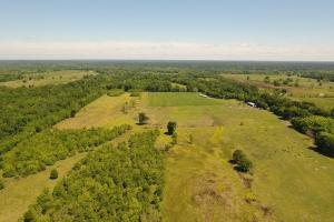 88 acre Ranch/Recreational/Hunting Tract in San Jacinto, TX (6 of 45)