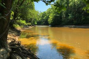 Sepulga River Lot - Conecuh County AL