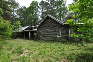 50 AC WOODED PARADISE NEAR THE WOODLANDS / WOODFOREST in Montgomery, TX (5 of 17)
