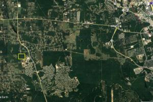 50 AC WOODED PARADISE NEAR THE WOODLANDS / WOODFOREST in Montgomery, TX (13 of 17)