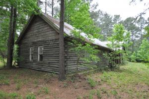 50 AC WOODED PARADISE NEAR THE WOODLANDS / WOODFOREST in Montgomery, TX (7 of 17)