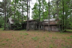 50 AC WOODED PARADISE NEAR THE WOODLANDS / WOODFOREST in Montgomery, TX (4 of 17)
