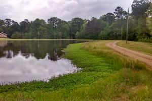 Country Home Site/Pasture Acreage - Hinds County MS