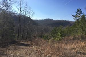 Highway 25E Acreage - Grainger County TN