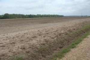 40+/- Row Crop Farmland - Lincoln County AR