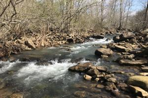 606+/- Acre Ozark Mountain Recreational Property - Van Buren County AR
