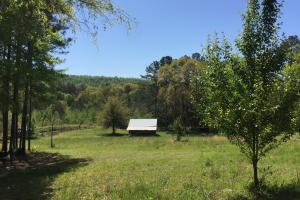 Shoal Creek Road Farm & Timber Tract - Saint Clair County AL