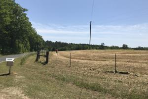 GD Smith Cattle Farm in Laurens, SC (56 of 82)