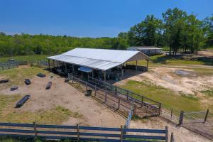 Smith-Heffner Cattle Farm in Laurens, SC (7 of 97)