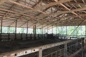 Smith-Heffner Cattle Farm in Laurens, SC (69 of 97)