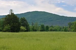 Ouachita Mountains Farm and Hunting Ranch - Montgomery County AR