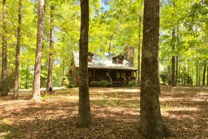 Chilton County Cabin & Farm - Chilton County AL