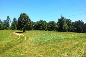 Buchanan Farming & Recreational Estate - Haralson County GA
