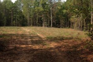 Photo 12 of 21  ·  12 of 21 Photos for Oakmulgee Creek Sprott Tract in Perry County, AL