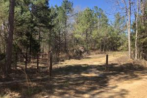 Sallis Recreational Tract - Attala County MS