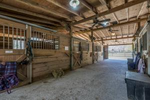 <p>Main Barn Interior-6 Stalls with Room for 2 Additional</p>