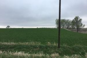 Beresford Area Farmland - Lincoln County SD