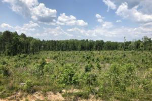 Rural Hunting Land - Smith County MS