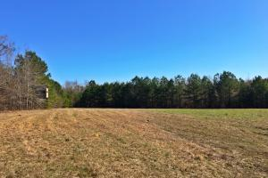 Monroeville Hunting and Recreational Tract - Monroe County AL