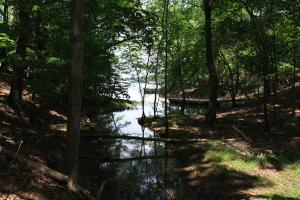 1.8 Acres on Lake Hartwell in Franklin, GA (3 of 20)