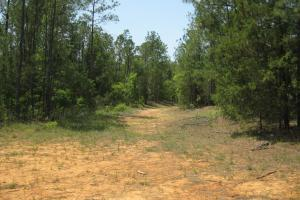 <p>Rear loading deck area of 1-2 +/-&nbsp; acres perfect for food plot location. Several roads intersect at this spot.</p>