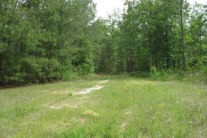 <p>Front area homesite, food plot, old loading deck area of 2-3 +/- acres. Level building site approximately 1/4 mile off Hwy 176.</p>